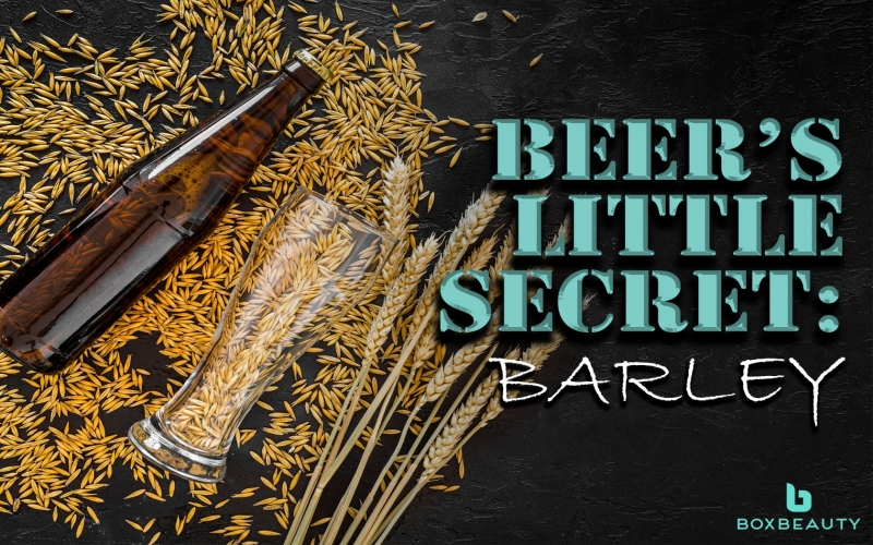 Beer's Little Secret: Barley