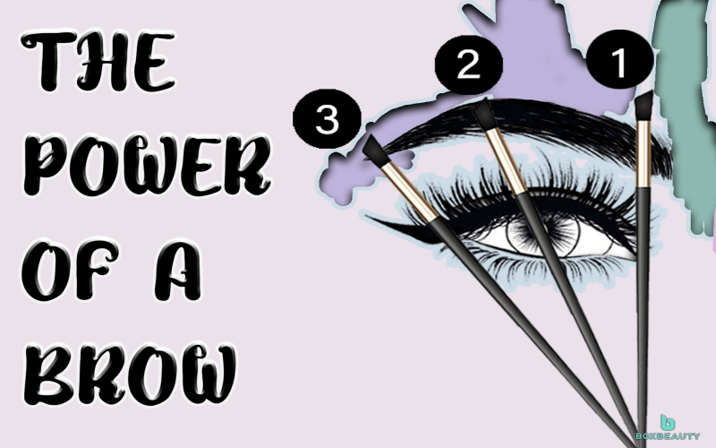 The Power of A Brow