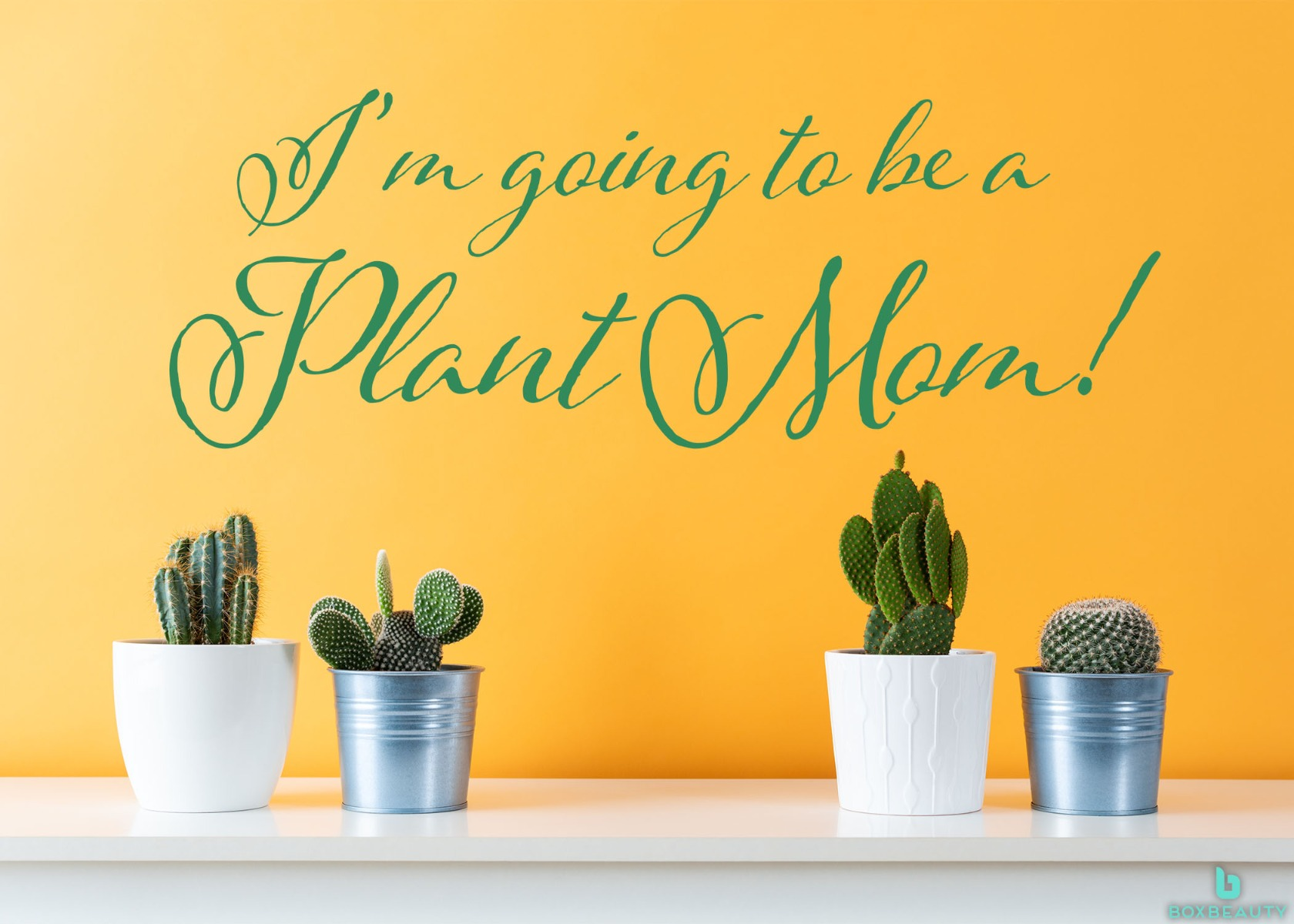 I'm Going To Be A Plant Mom